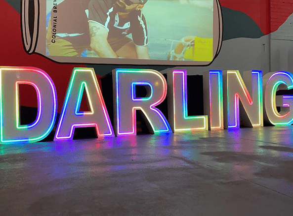 DARLING Website